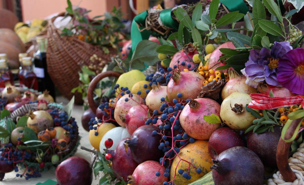 fruttifotocircolo